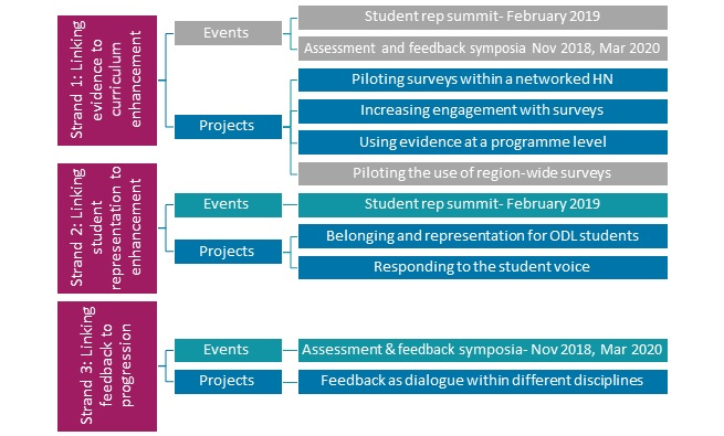 Curriculum enhancement flowchart